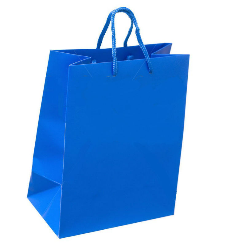 full bright brown paper grocery shopping bag with ribbon handle/ paper grocery bags with handles