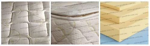 Spina Star Rebond Foam Mattress