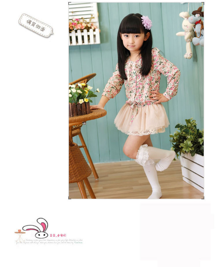 2013 new fashion princess girl flower chiffon tutu dress long sleeve children autumn dresses 5pcslot free shipping (5).jpg
