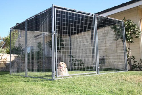 the chain link dog kennels