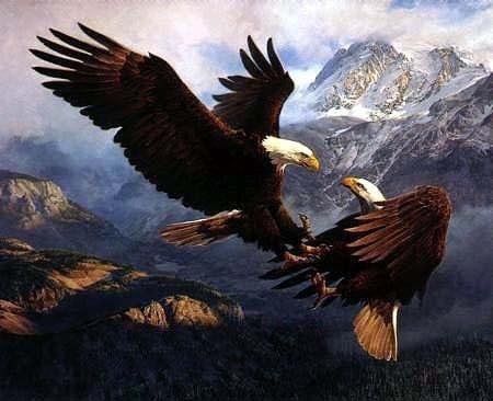 Envío libre 100% handcraftsart pintura de aceite águila 24 x 36 ...