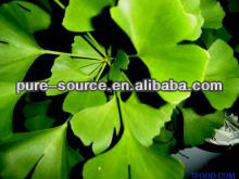 ginkgo flavone glycosides terpene lactones for anti-cardiovascular disease