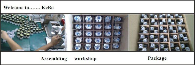 auto flush valve assembly solenoid valve