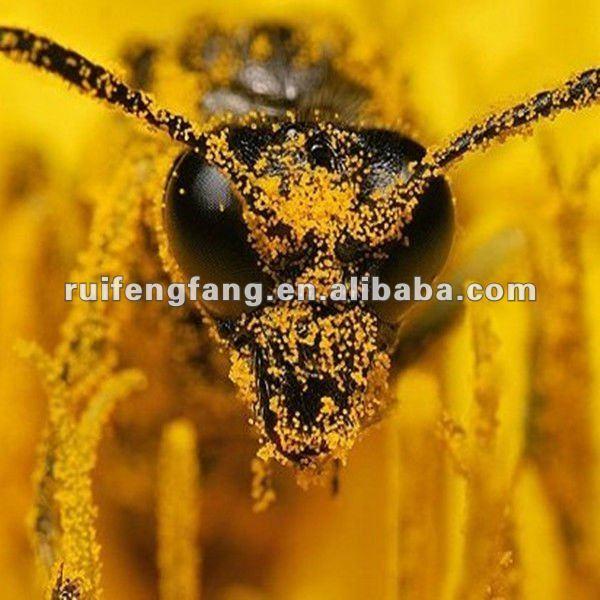 2013 best selling new zealand bee pollen