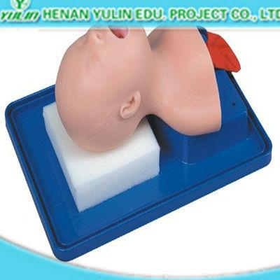 neonatal endotracheal intubation model for teaching nurse training model