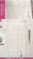 Free shipping plus size knee-length dress big cute lace women  2013 summer brand career office ladies slim black white S  - XXXL