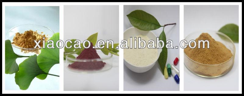 GMP Certified Stevia Manufacturer/Stevia Suppiler/Supply Bulk Pure Stevia Extract