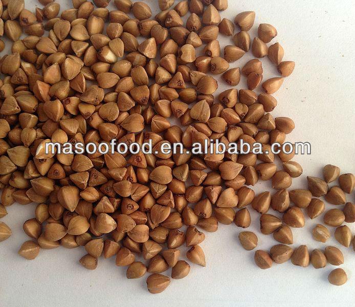 2013 China(mainland) buckwheat qutar china and buckwheat husk from china buy grain popuralr to sale