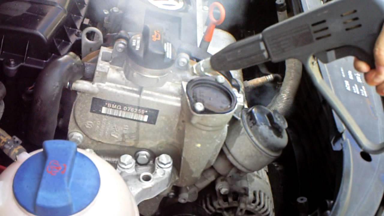 YL-10000 220V-240V two guns steam car cleaner