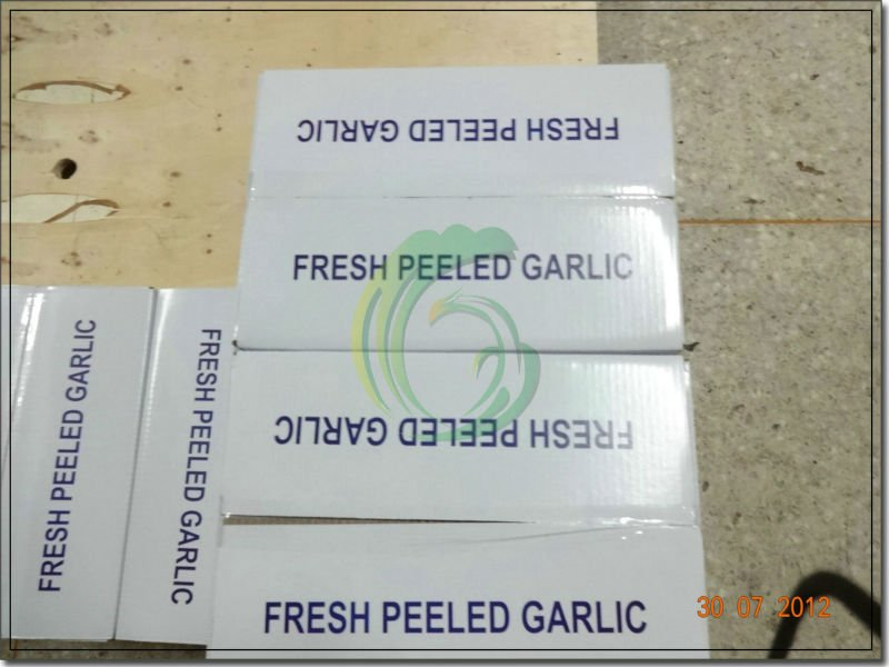crop 2014 market prices fresh natural garlic price