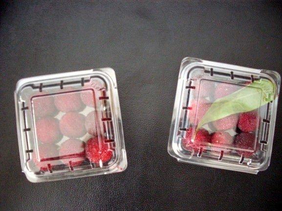 Food PET Tray