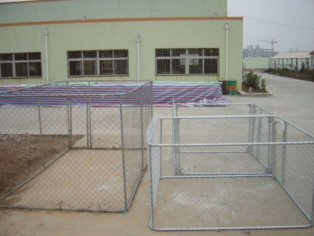 Outdoor galvanized heavy duty chain link dog kennel