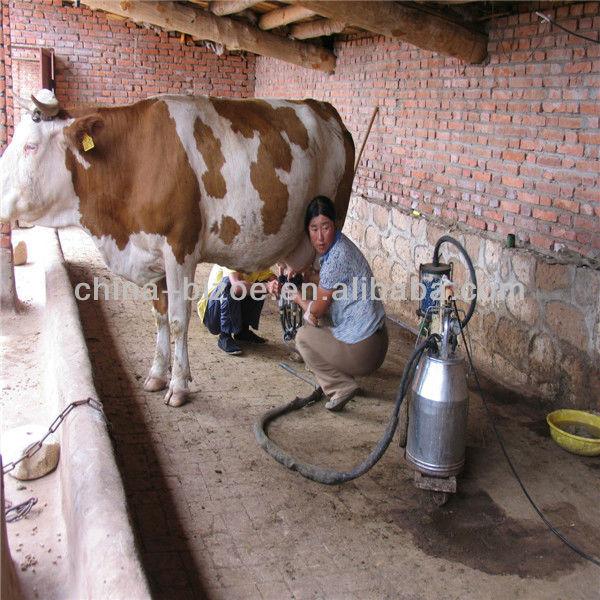 аппарат для дойных коров цена Квартиру Комнату Дом