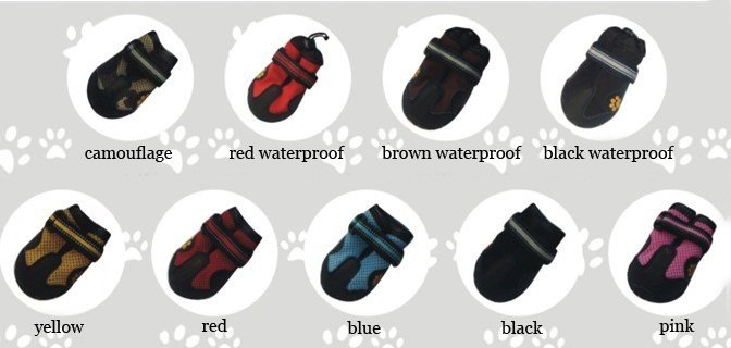 dog shoes POMPREECE 6.jpg