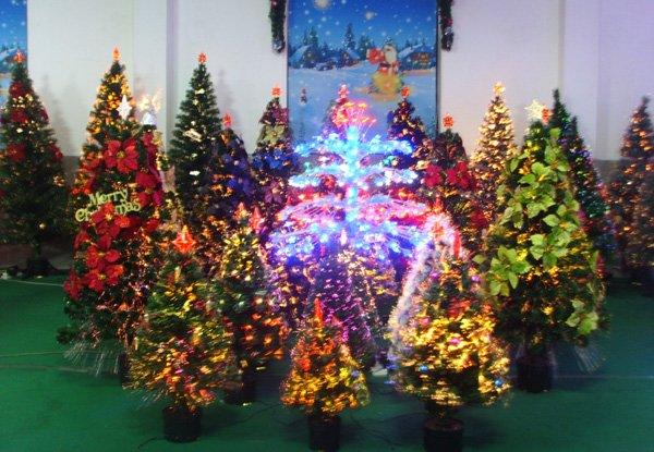 زيتة عيد الميلاد 320387159_883