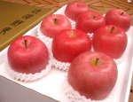 fresh Fuji apple supply in November
