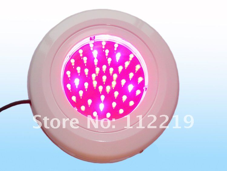 50W grow light 2