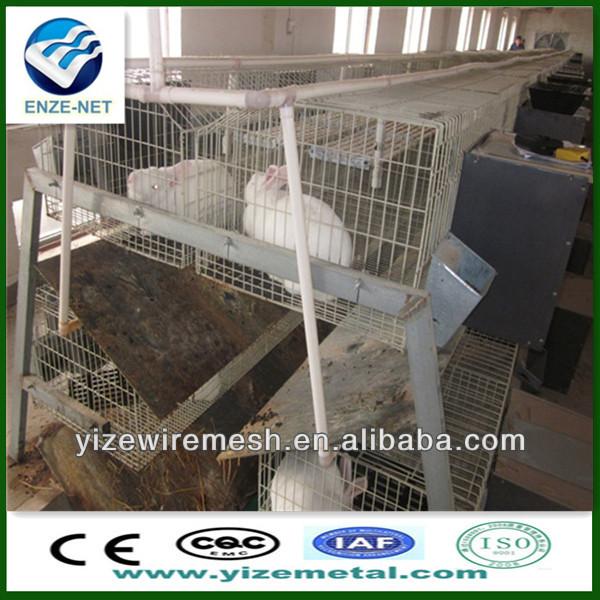 petsmart rabbit cage