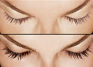 FEG Eyelash enhancer /eyelash grow / longer eyelash/eyelash lengthening,Herbal Ingredient