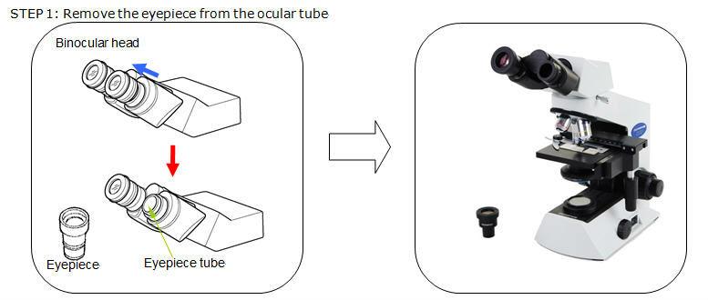 Binocular&ToupCam1
