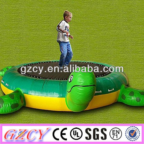 Schildkröte Aufblasbar modernes Event Design Outdoor Anlagen