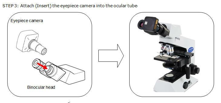 Binocular&ToupCam3