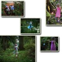 Детское электронное домашнее животное 5pcs/lot drop shipping Flitter Fairies Electric meadow fairy _In Stock
