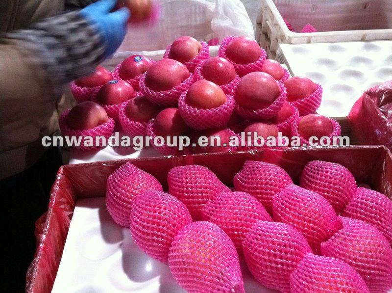 AB class Yantai&Penglai fresh red Fuji apple(5 layer blushed)