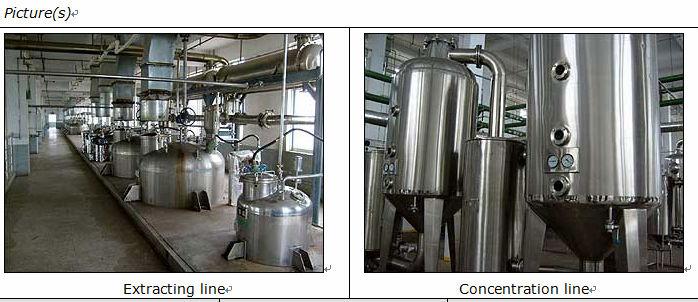 Ginkgo biloba Extract Ginko flavones Terpenlacton Herbal extract