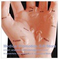 Медицинская наука