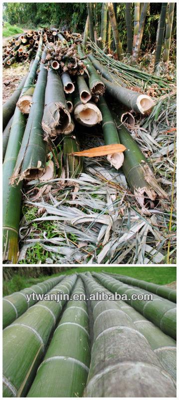 Japanese Bamboo/Wooden Chopsticks