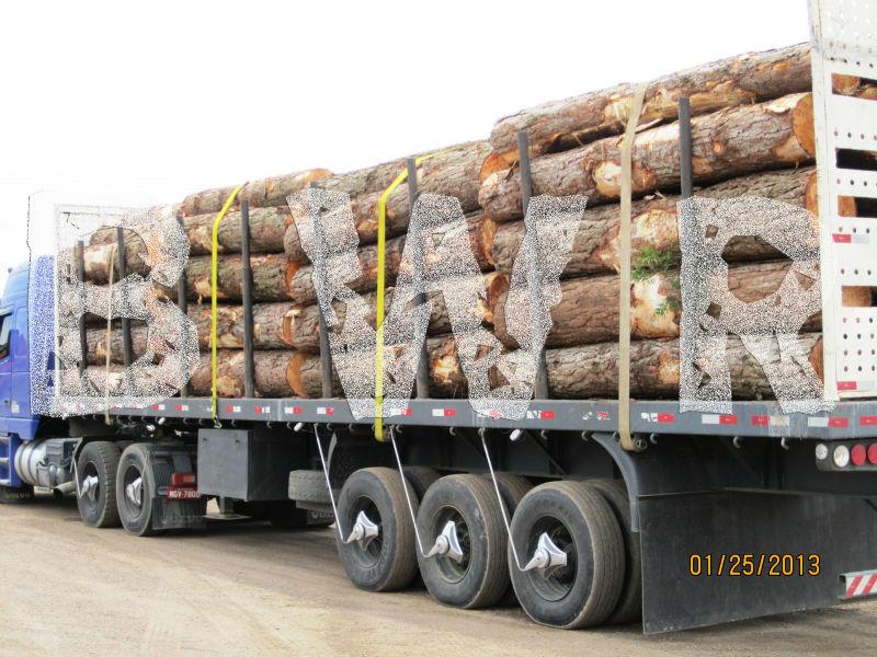 Yellow Pine Logs 2  - BWR - small