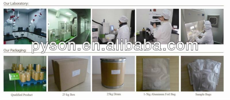 ligustilides powder PE dong quai extract ligustilide