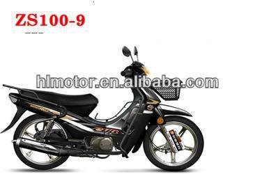 ZS100-9.jpg
