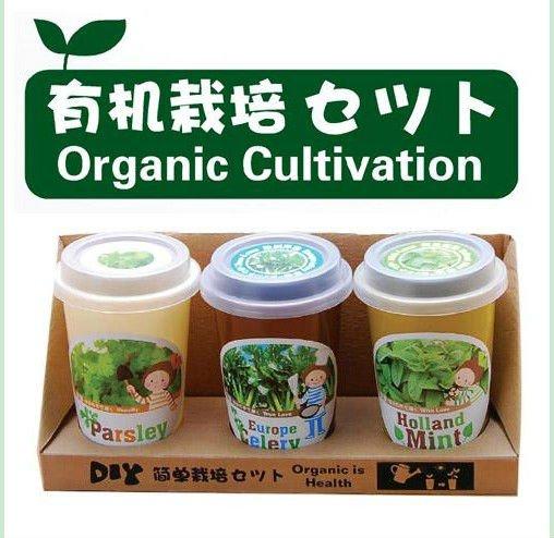 DIY garden planting pot organic cultivation