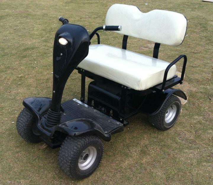 2 places véhicule utilitaire sport électrique pliant avec contrôleur curtis (AX-A4)