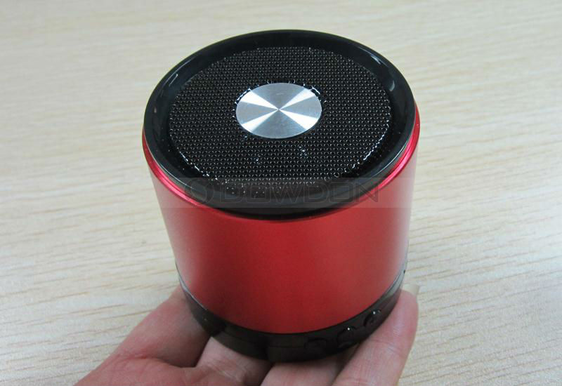 Mini Bluetooth Speaker (9)