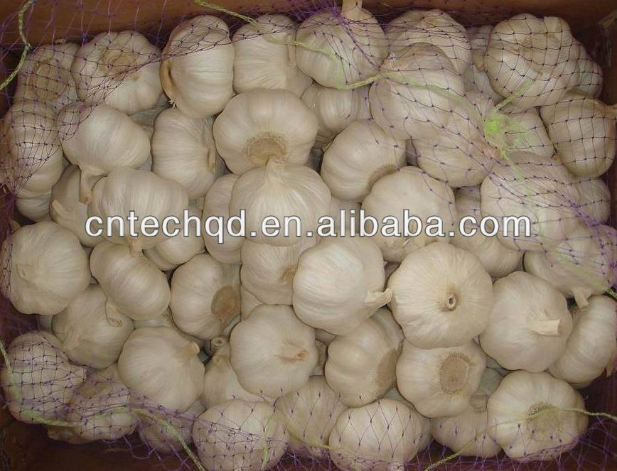 2013 chinese fresh natural garlic for sale