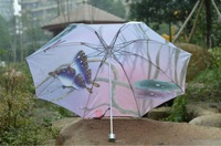 Зонт arts umbrella / painting umbrella / foldable umbrella