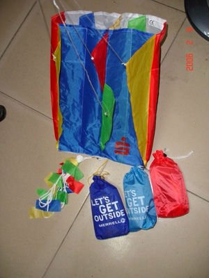 easy-flying promotional children sled kite