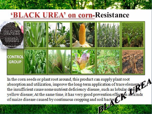 Pérola negra Granular Blackgold Humate | Comprar Uréia Fertilizante de Liberação Lenta de Nitrogênio