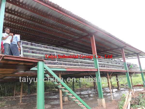 Poultry Feeding in Kenya Cages For Kenya Poultry