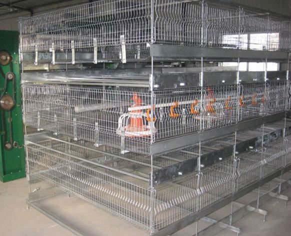 Poultry farm house design animal cage chicken cage