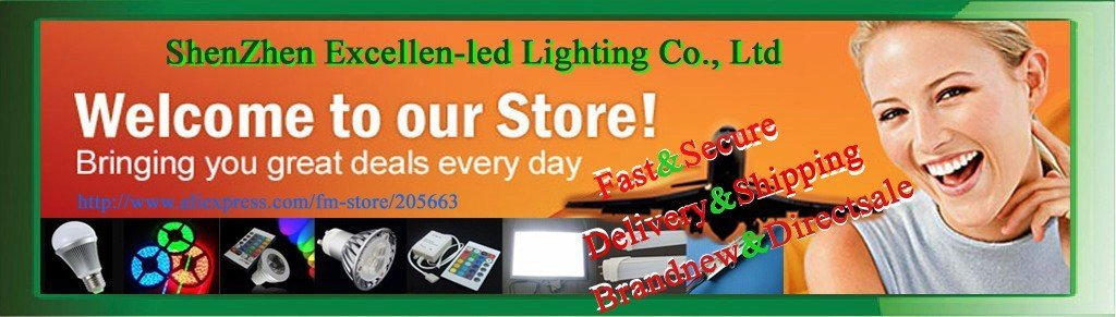 LED Flexible strip light 60leds/m 5m 300led  red/bule/green/pure White /warm white/RGB color  Waterproof-IP67 PVC + tube