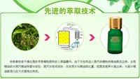 10ML vazzini Eucalyptus pure essential oil(D15)