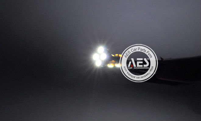 AES T10 type Can-bus Led bulb,strong power and small volume,for retail and wholesale