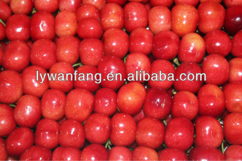 healthy fruit 2013 china fresh red cherry