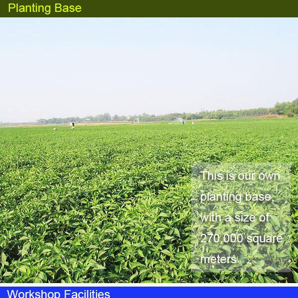 Shandong Pangda Condiment and Food Co., Ltd (5).jpg