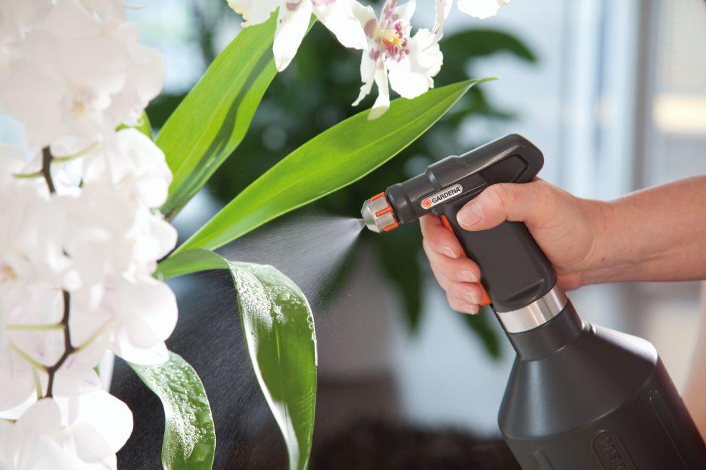Уход за комнатным растениями в домашних условиях 139