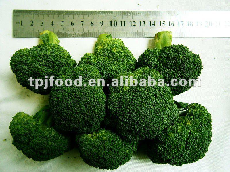 frozen broccoli florets (iqf vegetable) with FDA BRC,HALAL,KOSHER,HACCP